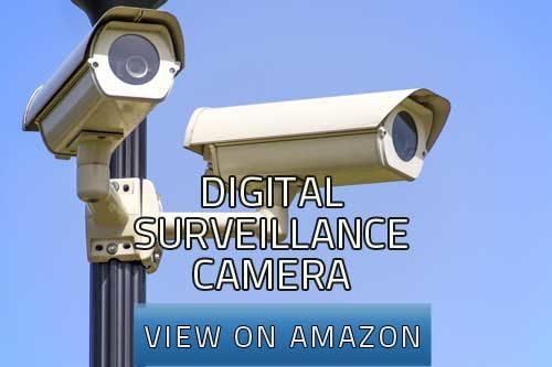 digital surveillance camera image
